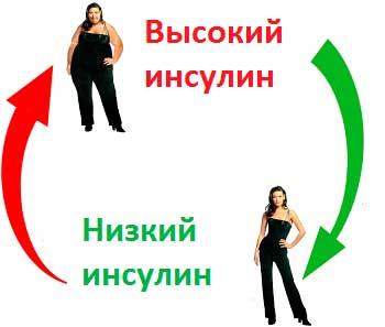 Высокий инсулин вызывает ожирение - схема