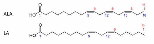 альфа-линоленовая кислота