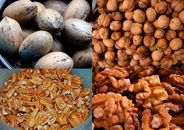 грецкие орехи и пекан - сравнение внешнего вида