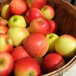 корзинка яблок