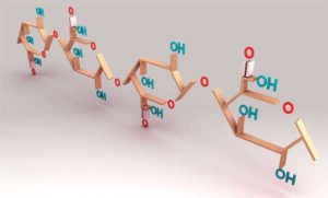молекула пектина