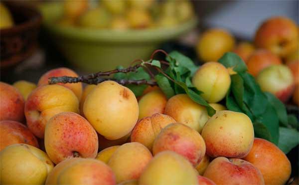 россыпь фруктов