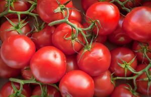 кисть свежих помидоров