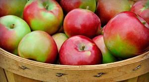 яблоки в корзине