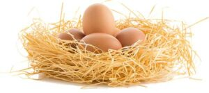 яйца в соломе