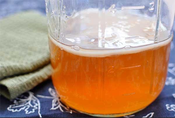 Культура чайного гриба, выращенная дома с нуля