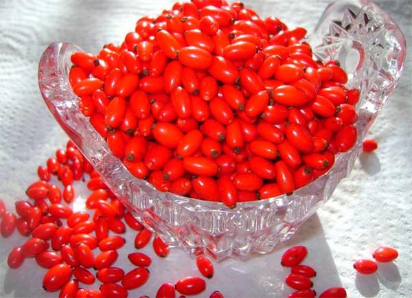 чашка с ягодами барбариса