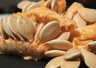 семена тыквы крупным планом