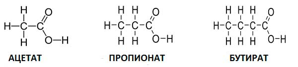 химическая формула масляной кислоты, уксусной кислоты и пропионовой