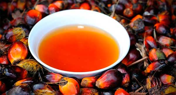 нефракционированное пальмовое масло
