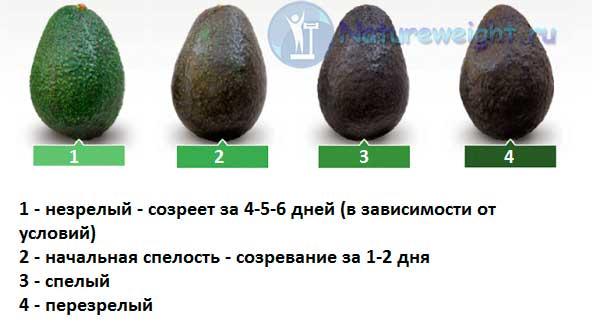 рисунок, показывающий соотношение между спелостью авокадо и его цветом