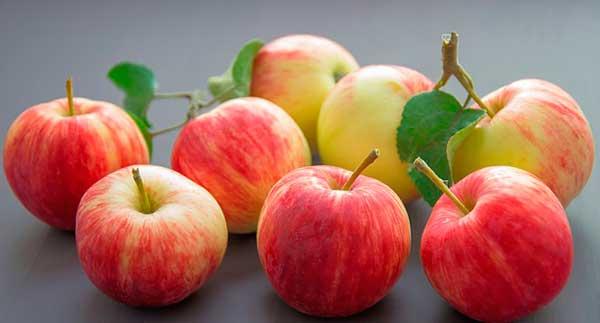россыпь яблок