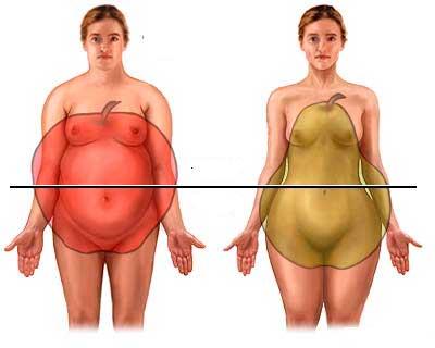 Как похудеть фигурам «яблоко» и «груша»: особенности упражнений, питания и диеты