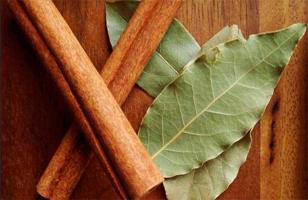 Лавровый лист в народной медицине и кулинарии: польза и вред