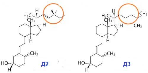 Для чего полезен витамин Д и з каких продуктов его можно получить (таблица)