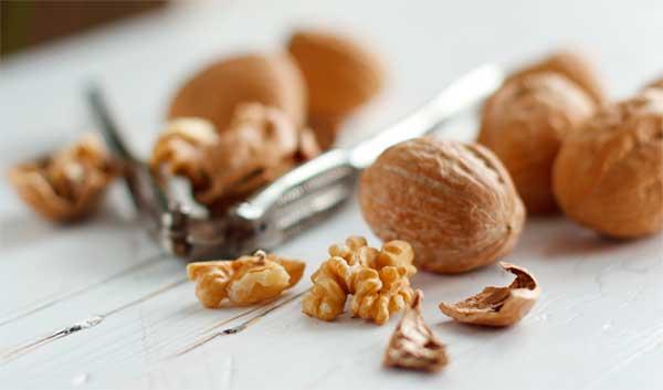 Чем полезен грецкий орех для организма: основная польза и возможный вред