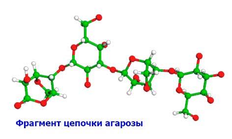 фрагмент цепочки агарозы