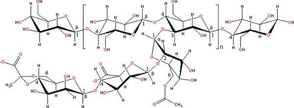 химическая формула ксантановой камеди