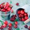 Лечебные свойства клюквы и противопоказания для ее употребления