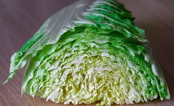 кусок Brassica rapa