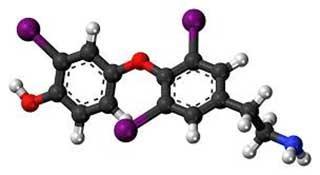 молекула кверцетина