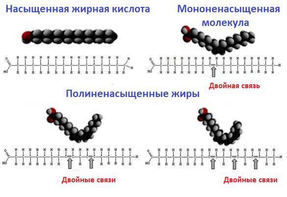 молекулы с двойными и одинарными связями
