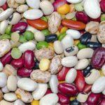 разноцветные бобы