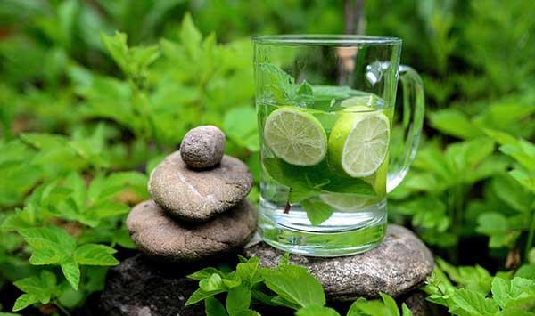 зелень. камни и стакан