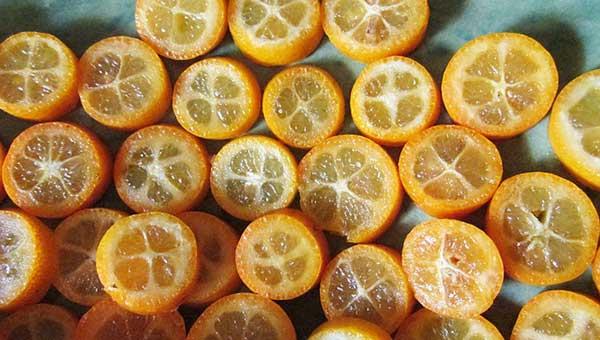 порезанные плоды Fortunella