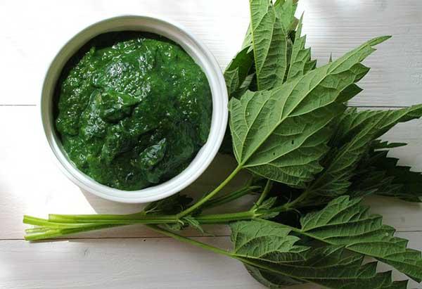 крапива и зеленая паста