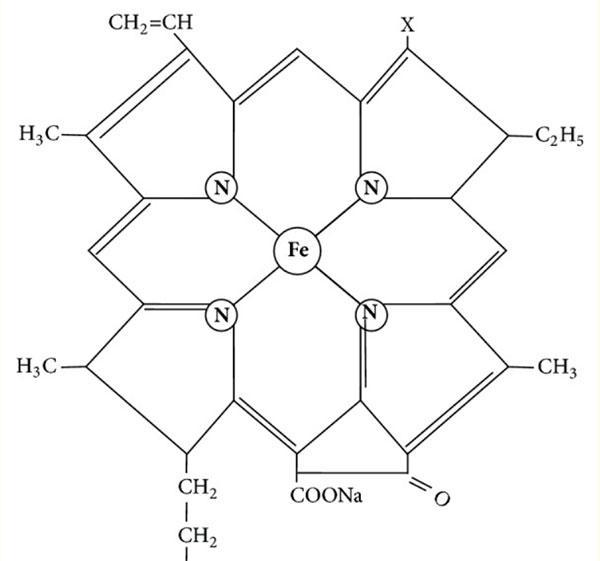 молекула SIC (sodium iron chlorophyllin)